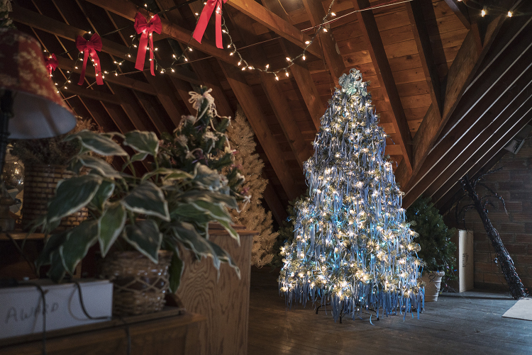 A tree adorned with 2,000 blue ribbons is illuminated in the attic of the Heddy home. Each ribbon on the tree represents a reported case of child abuse in the county for the year it was decorated. Each year the Heddy's generate, on average, $15,000 t