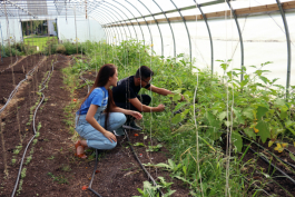 Kettering University students are helping to use technology to reduce irrigation costs for the Asbury hoophouse.