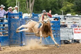 The rodeo returns to the 2019 Genesee County Fair on Saturday, Aug. 24.