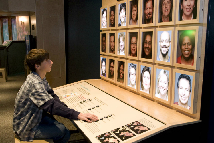 "The exhibit ""Race: Why Are We So Different?"" includes several hands-on exhibits."