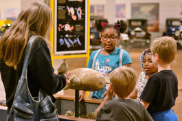 Museum-goers look at the platypus exhibit at The Robot Zoo in the Sloan Museum at Courtland Center.